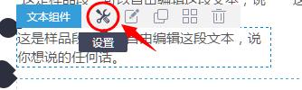 進入文本設置項.png